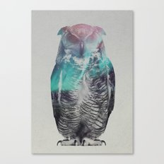 Owl In The Aurora Borealis Canvas Print