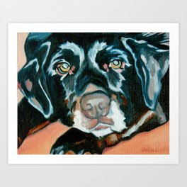 Daisy the Black Lab Dog Portrait Art Print