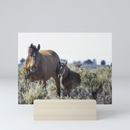 Bay Mare and Her Foal, No. 1, Palomino Butte Herd April 2020 Mini Art Print