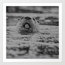 Otternose Art Print