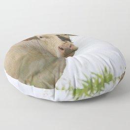 Cow Bird Floor Pillow