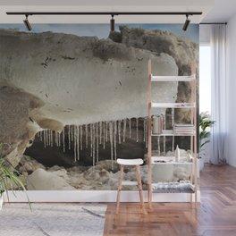 T Rex in Ice Wall Mural