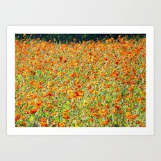 Peace and Harmony in The Colors of Sunshine Art Print