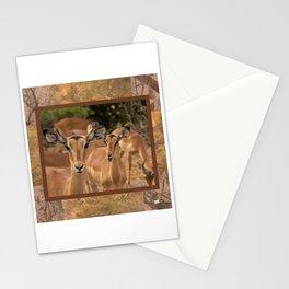 CW-001-Gazelle Stationery Cards