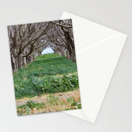 Nature - Crow's Landing Trees 1 Stationery Cards