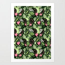 Calathea Jungle Art Print