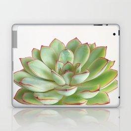 Green Succulent Laptop & iPad Skin