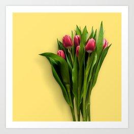 Yellow Bright Light Amber Pink Tulip Blossoms Flatlay Art Print