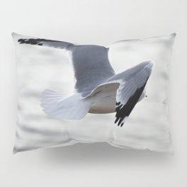 Flight Pillow Sham