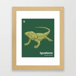 Ii - Igualama // Half Iguana, Half  Ilama Framed Art Print