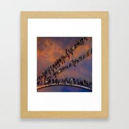 Pigeon Gangs Framed Art Print