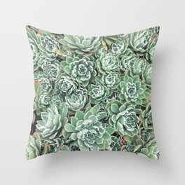 Succulent Bed Throw Pillow