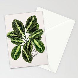 Maranta Lemon lime interior Plant Stationery Cards