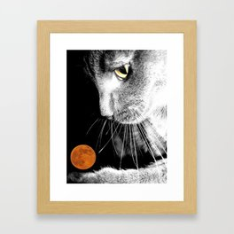 Silver Cat and Moon Framed Art Print