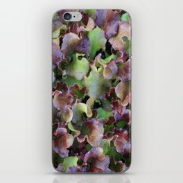 Red Leaf Lettuce iPhone Skin