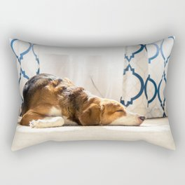 Beagle hound mix sunbathing indoors by the window. Front view. Rectangular Pillow