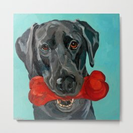 Ozzie the Black Labrador Retriever Metal Print