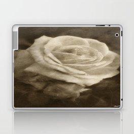 Pink Roses in Anzures 2 Antiqued Laptop & iPad Skin
