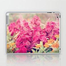 Garden Sunset  Laptop & iPad Skin