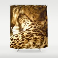 cheetah Shower Curtains featuring Cheetah by Tea and Roses