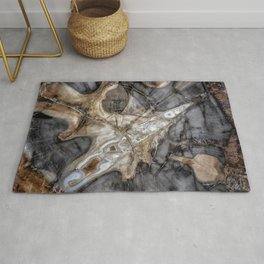 Petrified wood 3264 Rug