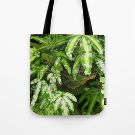 The Fernery Tote Bag