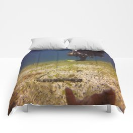 Above the Water Comforters