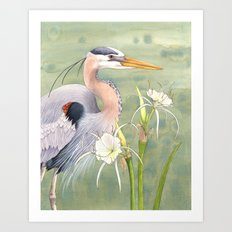 Great Blue Heron and Spider Lilies Art Print