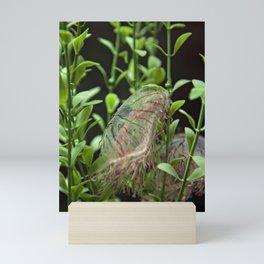 Jellyfish with Stripes Mini Art Print