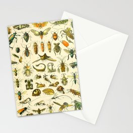 "Adolphe Millot ""Insectes"" Nouveau Larousse 1905 Stationery Cards"