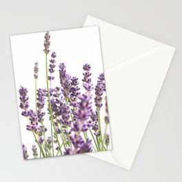 Purple Lavender #3 #decor #art #society6 Stationery Cards