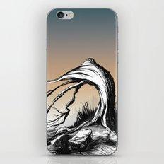 Tree 13 iPhone & iPod Skin