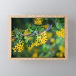 Yellow Blossoms 1 Framed Mini Art Print