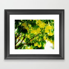 Yellow Flowers. Framed Art Print