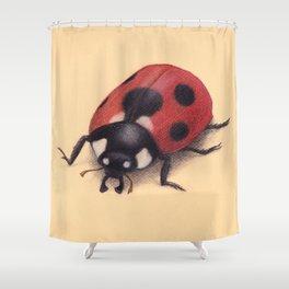 Labybug by Lars Furtwaengler   Colored Pencil / Pastel Pencil   2011 Shower Curtain