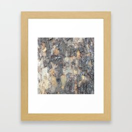 Abstracts in Nature Series -- Sycamore Bark Framed Art Print