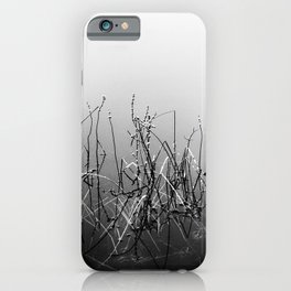 Echoes Of Reeds 3 iPhone Case