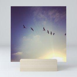 Sky High Pelicans Mini Art Print