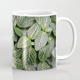 Fittonia / Mosaic Plant / Nerve Plant Coffee Mug