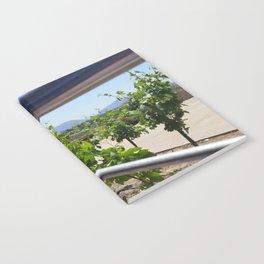 Vineyard Notebook