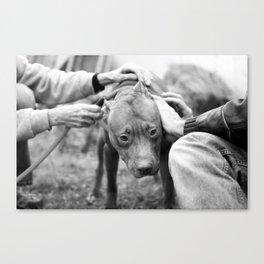 Surrendered  Canvas Print