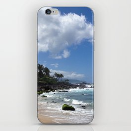 Stunning Beach and Cliffs with Waves Crashing iPhone Skin