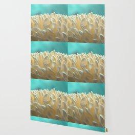 Cristina Wallpaper
