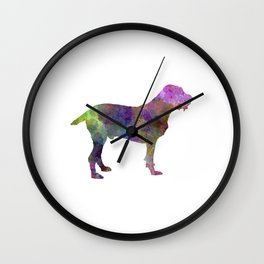 Spinone in watercolor Wall Clock