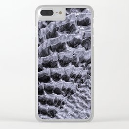 Ice Fields of Antarctica Clear iPhone Case