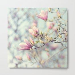 sweet magnolia Metal Print