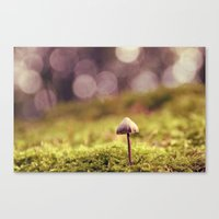 mushroom Canvas Prints featuring mushroom by anitaa