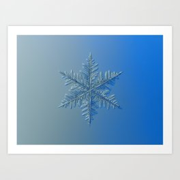 Real snowflake macro photo: Winter1 Art Print