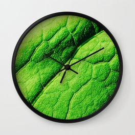 Green Leaf Texture With Visible Stomata Covering The Outer Epidermis Layer Wall Clock