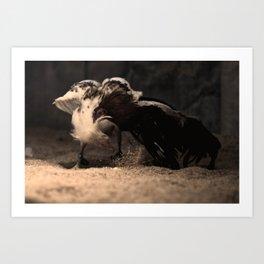 Cockfighting 5 Art Print